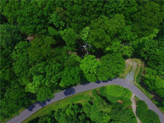 Lot 35 Utana Bluffs Trail, Ellijay, GA 30540 (MLS #5588789) :: North Atlanta Home Team