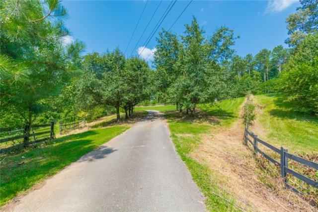1610 Plunketts Road E, Buford, GA 30519 (MLS #6042179) :: KELLY+CO