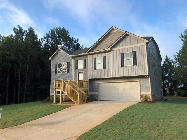 401 Branch Lane, Temple, GA 30179 (MLS #6540871) :: North Atlanta Home Team