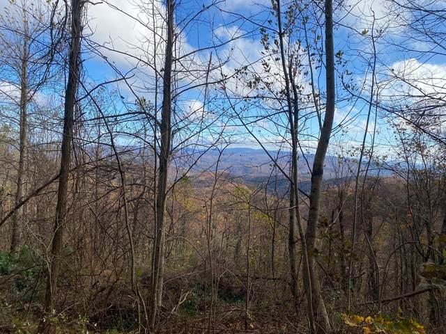 309 Burnt Mountain Ridge Road, Dawsonville, GA 30534 (MLS #6693978) :: The Butler/Swayne Team