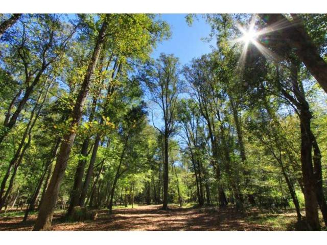 510 Lost River Bend, Milton, GA 30004 (MLS #5216714) :: North Atlanta Home Team