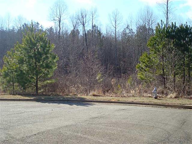 Lot 16 Village Court, Jasper, GA 30143 (MLS #5397418) :: North Atlanta Home Team