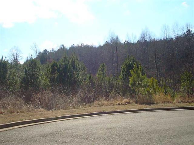 Lot 19 Village Court, Jasper, GA 30143 (MLS #5397423) :: North Atlanta Home Team