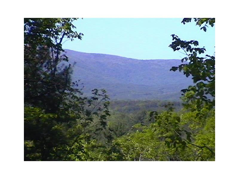 1633 Black Bear Trail, Big Canoe, GA 30143 (MLS #5534887) :: North Atlanta Home Team