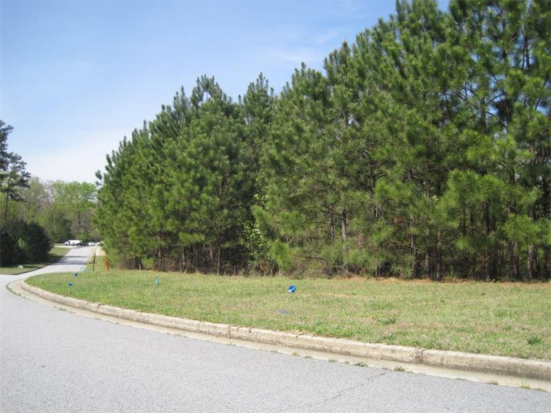4001 James Lake Drive, Conley, GA 30288 (MLS #5669759) :: North Atlanta Home Team