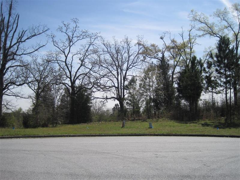 3990 James Lake Drive, Conley, GA 30288 (MLS #5669763) :: North Atlanta Home Team