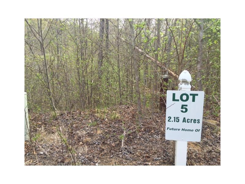 Lot 5 Wild Azalea Trail, Dahlonega, GA 30533 (MLS #5674759) :: North Atlanta Home Team