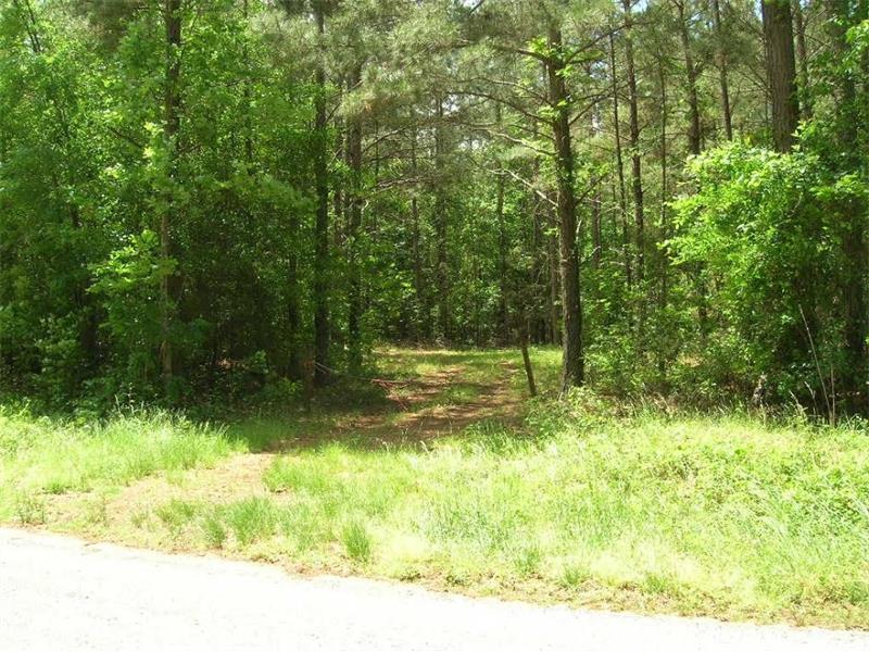1 Mccoy Bridge Road, Homer, GA 30547 (MLS #5685397) :: North Atlanta Home Team