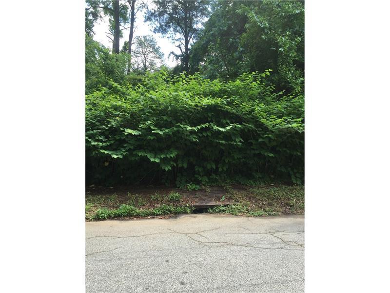266 Lamon Avenue SE, Atlanta, GA 30316 (MLS #5685812) :: North Atlanta Home Team