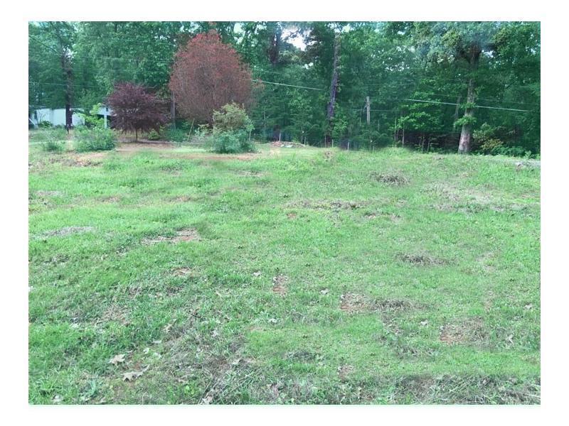 4161 Tribble Road, Cumming, GA 30028 (MLS #5692971) :: North Atlanta Home Team