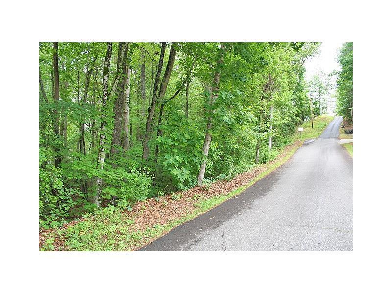1Bac Clyde Barrett Road, Dahlonega, GA 30533 (MLS #5693198) :: North Atlanta Home Team