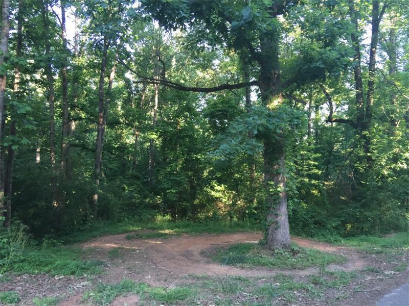 Lot 3 Moss Overlook Road, Dawsonville, GA 30534 (MLS #5697566) :: North Atlanta Home Team