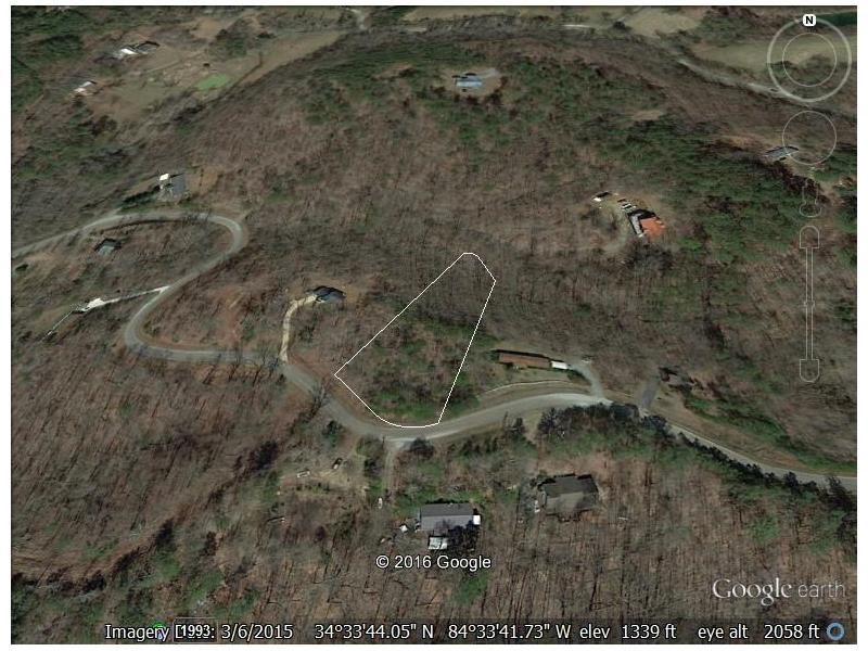 63 Wildcat Creek, Ellijay, GA 30540 (MLS #5710333) :: North Atlanta Home Team