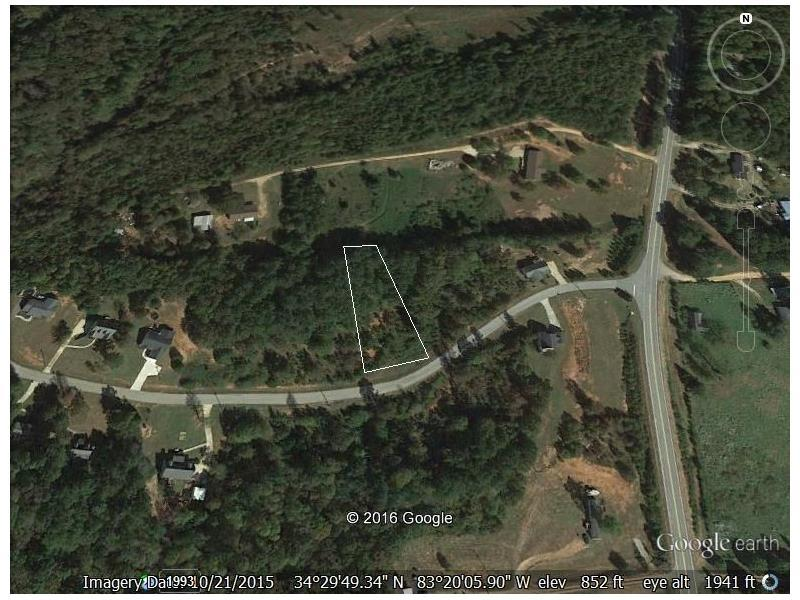 104 Tabitha Page Lane, Toccoa, GA 30577 (MLS #5710346) :: North Atlanta Home Team