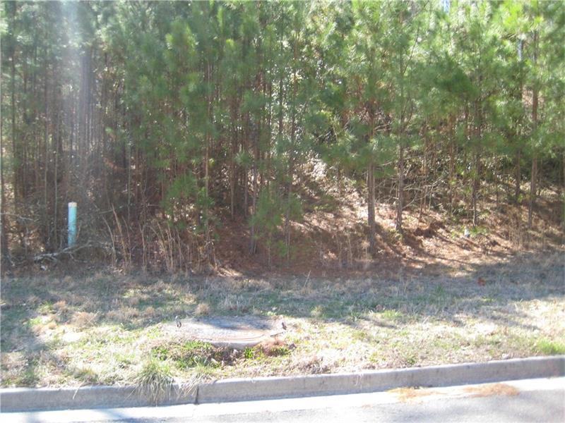 10 Hepworth Lane, Cartersville, GA 30120 (MLS #5717049) :: North Atlanta Home Team