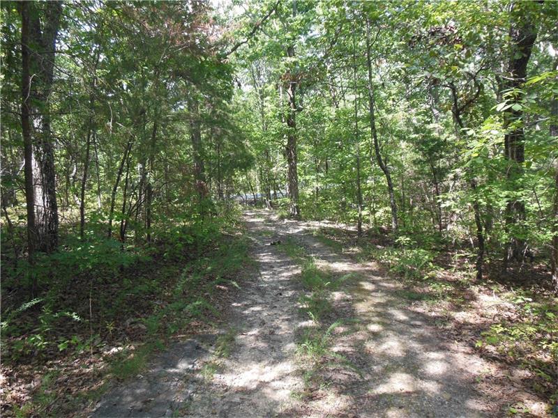 00 Wild Azalea Trail, Waleska, GA 30183 (MLS #5742051) :: North Atlanta Home Team