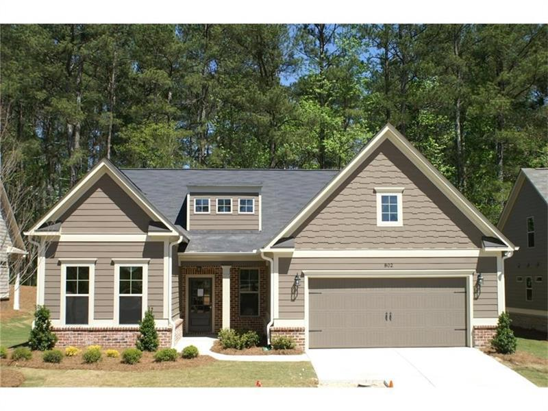 802 Palmetto Moon Road, Marietta, GA 30060 (MLS #5745918) :: North Atlanta Home Team