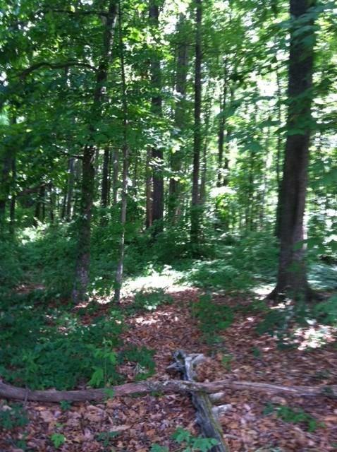 6455 Yellow Creek Road, Murrayville, GA 30564 (MLS #5892682) :: Path & Post Real Estate