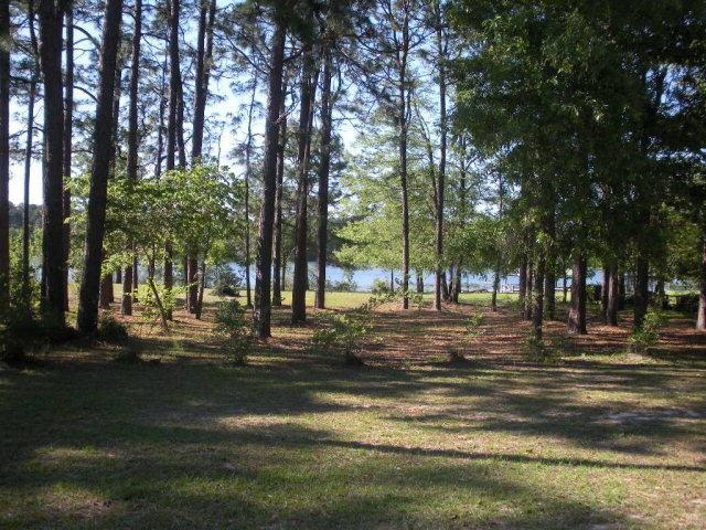 1060 Malone Drive, Donalsonville, GA 39845 (MLS #5955382) :: Carr Real Estate Experts
