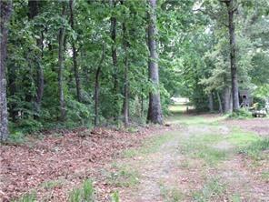00 E North Seed Tick Road, Dawsonville, GA 30534 (MLS #5959809) :: North Atlanta Home Team