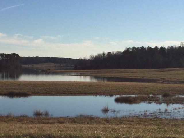 105 S Waters Edge Drive, Covington, GA 30014 (MLS #5963790) :: North Atlanta Home Team