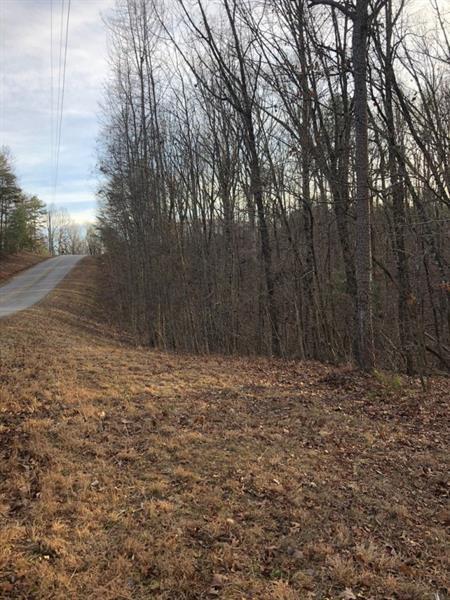 0 Ivy Hills Drive, Cleveland, GA 30528 (MLS #5964167) :: Carr Real Estate Experts