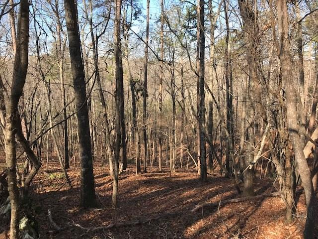 0 Golden Hills Drive, Woodstock, GA 30189 (MLS #5966716) :: Path & Post Real Estate