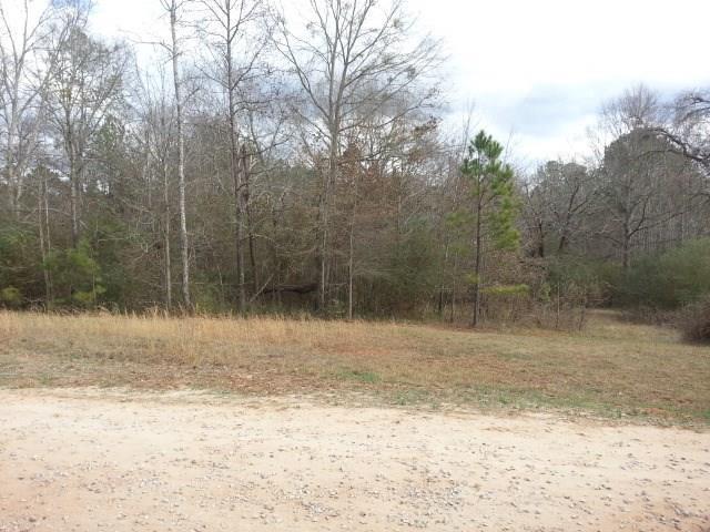 1508 Trestle Road, Locust Grove, GA 30248 (MLS #5967859) :: Carr Real Estate Experts