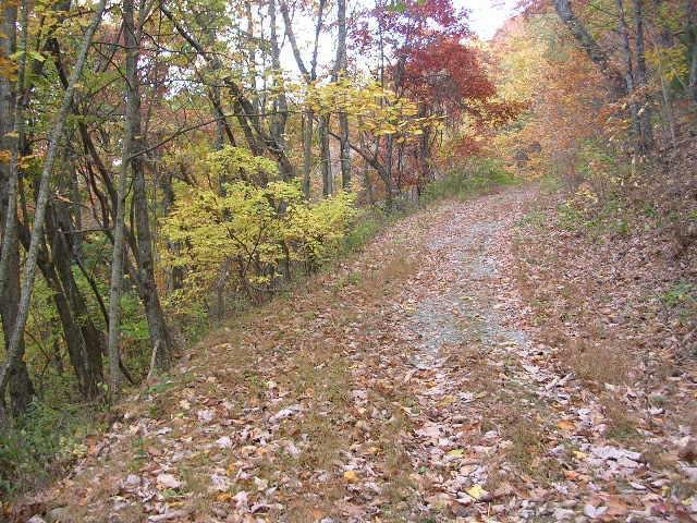 Lot 3D Locust Peg Road, Dawsonville, GA 30534 (MLS #5970177) :: RE/MAX Paramount Properties