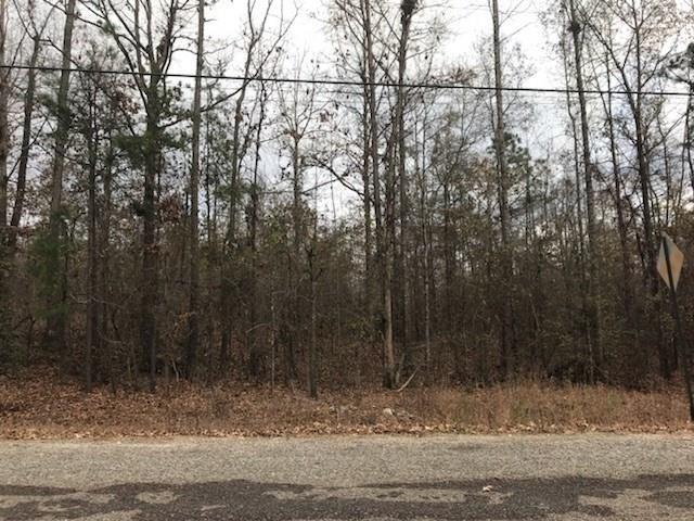 0 Harkness Road, Jackson, GA 30233 (MLS #5981718) :: North Atlanta Home Team