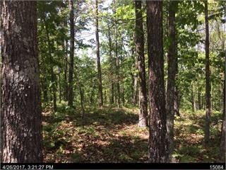 1386 Foxhound Trail NE, Ranger, GA 30734 (MLS #5992581) :: Carr Real Estate Experts