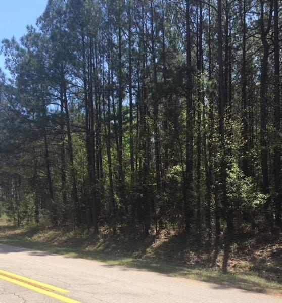 18 Davids Home Church Road, Danielsville, GA 30633 (MLS #5993266) :: North Atlanta Home Team