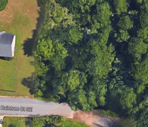 917 Raintree Court SE, Conyers, GA 30094 (MLS #5993895) :: The Bolt Group