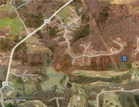 Lot 30 Townsend Pass, Alpharetta, GA 30004 (MLS #5994268) :: The Zac Team @ RE/MAX Metro Atlanta