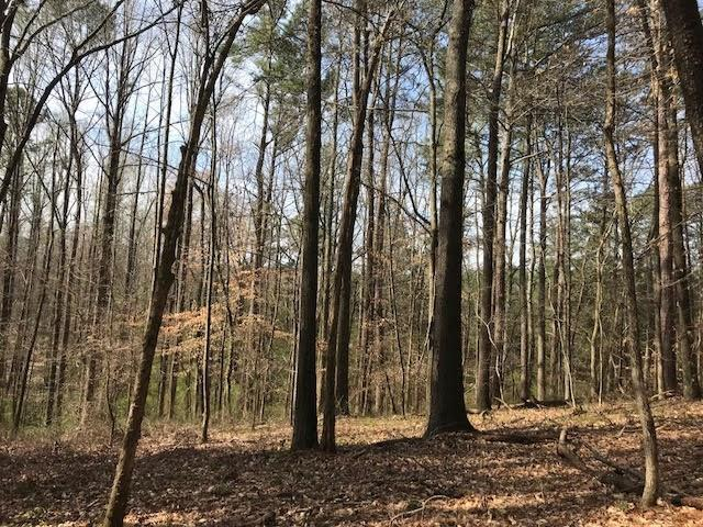 Trct 3 Cotton Road, Canton, GA 30115 (MLS #5997180) :: Carr Real Estate Experts