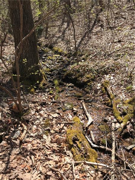 158 Cold Stream Trail, Jasper, GA 30143 (MLS #5999825) :: The Bolt Group