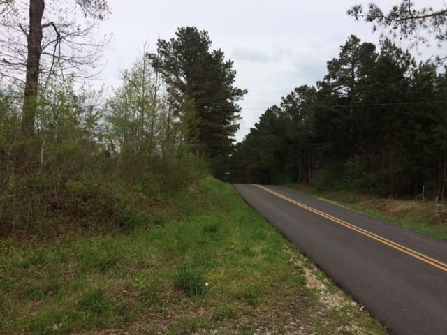 0 Puckett Road, Cedartown, GA 30125 (MLS #6001216) :: Carr Real Estate Experts