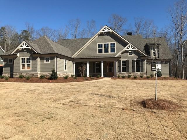 218 Blue Point Parkway, Fayetteville, GA 30215 (MLS #6009012) :: RE/MAX Paramount Properties