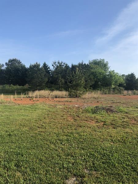 61 Oak Ridge Drive, Aragon, GA 30104 (MLS #6010755) :: Carr Real Estate Experts