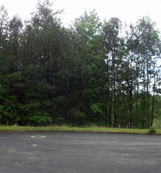 3925 Rajean Drive, Lawrenceville, GA 30044 (MLS #6012330) :: The Bolt Group