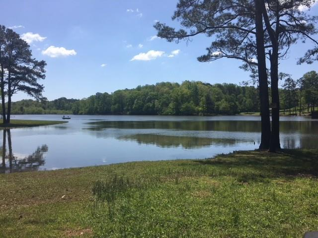 Lot 3 Hammock Lane, Milton, GA 30004 (MLS #6017622) :: RE/MAX Paramount Properties