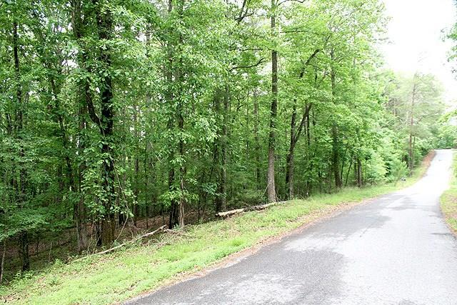 Lot 41 Laurel Circle, Dahlonega, GA 30533 (MLS #6018506) :: RE/MAX Paramount Properties