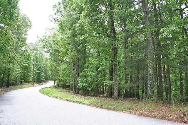 Lot 40 Laurel Circle, Dahlonega, GA 30533 (MLS #6018522) :: RE/MAX Paramount Properties