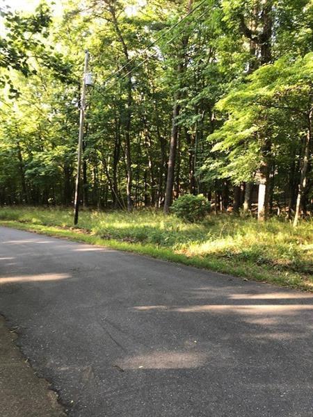 Lot 46 Buckeye Trail, Jasper, GA 30143 (MLS #6021768) :: Five Doors Roswell | Five Doors Network