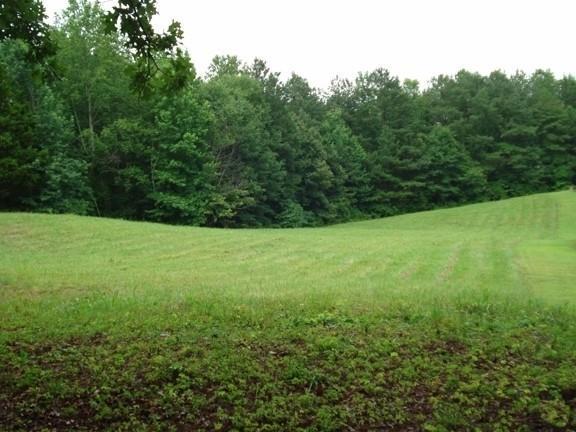 178 Owens Mill Path, Dallas, GA 30132 (MLS #6022463) :: North Atlanta Home Team