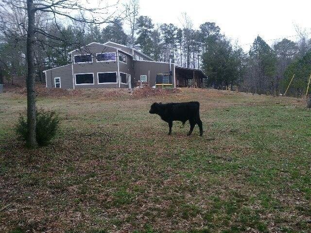 1969 Moores Ferry Road SW, Plainville, GA 30733 (MLS #6030403) :: RE/MAX Paramount Properties