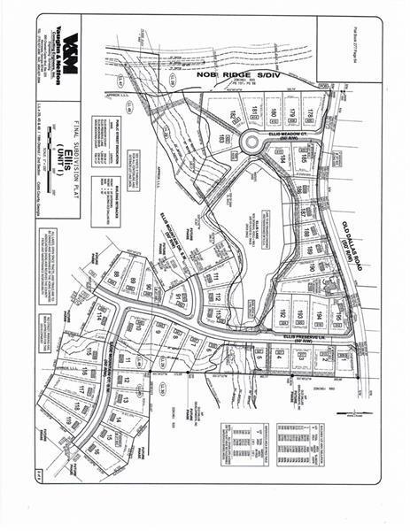 333 Ellis Preserve Lane, Marietta, GA 30064 (MLS #6030483) :: The Cowan Connection Team