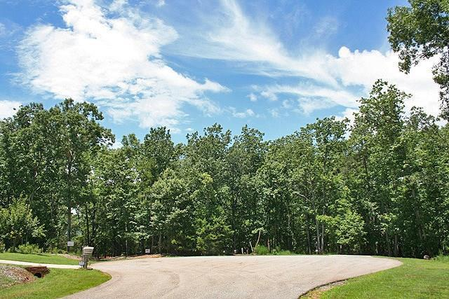 0 Twin Fawns Trail, Dahlonega, GA 30533 (MLS #6038150) :: RE/MAX Paramount Properties