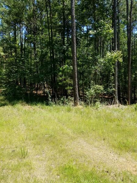 5090 Rutledge Drive, Acworth, GA 30101 (MLS #6039753) :: North Atlanta Home Team