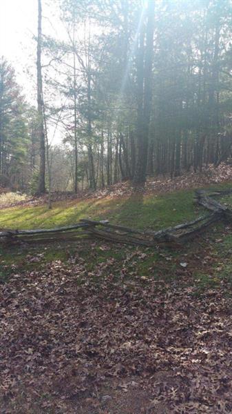 1300 Mill Creek Trail, Cleveland, GA 30528 (MLS #6048189) :: Hollingsworth & Company Real Estate
